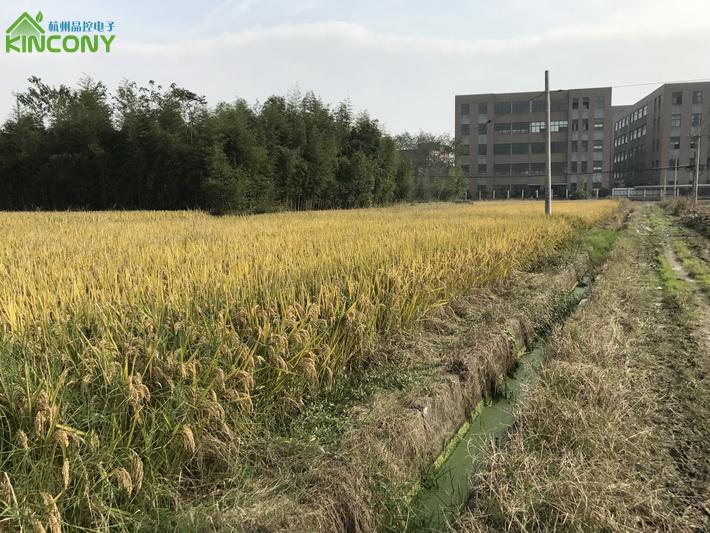 智能农业灌溉系统
