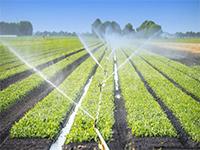 KC868-H8实现智能远程抽水灌溉解决方案